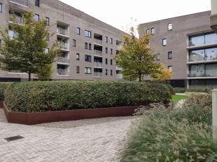 Appartement à vendre                     à 2050 Antwerpen