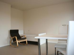 Deze ruime studio is gelegen op de vijfde verdieping van het gebouw Ambassade in Heverlee. Het heeft een slaapgedeelte, living/bureau, keuken en badka