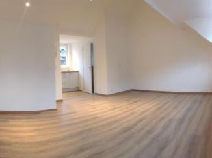 Volledig vernieuwd pand in hippe buurt Zurenborg. Bovenste verdiep is een studio van ongeveer 40m2. Open keuken met nieuwe toestellen (inductie, ijska
