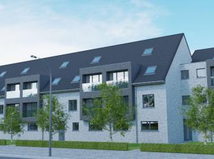 Dit exclusieve project is gelegen aan de hoek van de Brusselsesteenweg en Hofkwartier, op 1,50 km van het centrum. Het station en het centrum van Nino