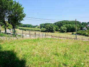 Nous vous proposons cette parcelle (Lot 2) d'une superficie de 9 à 80ca à Onze-Lieve - Vrouw Lombeek. Ce village a été cho