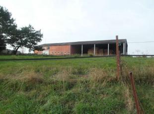 Dit aanbod bestaat uit een voormalig rundveebedrijf en weiland. Het voormalig bedrijf omvat een gewezen bindstal, loopstal en een loods. De totale opp