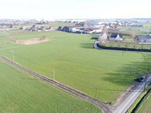 Ons aanbod betreft een mooie blok akkerland van 3 ha akkerland gelegen te Ardooie<br /> <br /> Oppervlakte: 3 ha 05 a 43 ca<br /> Bestemming: agrarisc