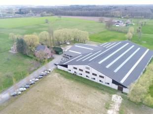Dit aanbod betreft een verzorgd en een recent complex voor een paardenfokkerij/ -houderij met een totale oppervlakte van 5 ha 95 a 64 ca. <br /> <br /