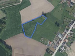 Dit aanbod betreft een perceel landbouwgrond te Zwalm:<br /> <br /> Oppervlakte: 58 a 53 ca<br /> Gebruik: weide<br /> Bestemming: agrarisch gebied<br