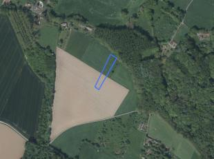 Dit aanbod betreft een perceel landbouwgrond te Maarkedal:<br /> <br /> Oppervlakte: 22 a 40 ca<br /> Gebruik: akkerland<br /> Bestemming: natuurgebie