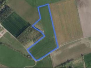 Dit aanbod betreft een mooie blok akkerland te Maldegem:<br /> <br /> Oppervlakte: 3 ha 21 a 85 ca<br /> Bestemming: Agrarisch gebied<br /> Huidig geb
