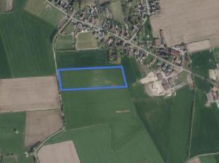Dit aanbod betreft een mooie blok akkerland te Maldegem:<br /> Oppervlakte: 2 ha 09 a 41 ca<br /> Bestemming: Agrarisch gebied<br /> Huidig gebruik: a