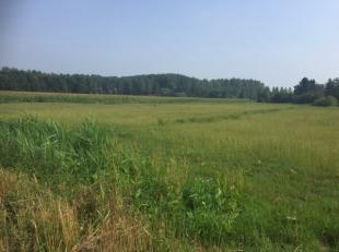 Landbouwgrond<br /> Akkerland<br /> Type = klei : Matig nat.<br /> +- 4159 m2<br /> Verpacht.<br /> Gelegen aan de Wielstraat - Bootdijk.