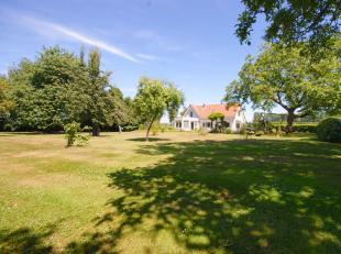 Prachtig gelegen woning met 2 loodsen en toonzaal op een prachtig perceel grond van 17.340m2 te Sluis (Vlotte verbinding naar Maldegem/Knokke-Heist)!