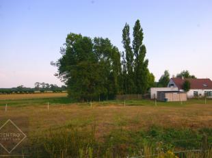 Op een idyllische ligging, tussen de weilanden van Sint-Michiels (Brugge) vind u deze te renoveren hoeve met bijgebouw op 8.093m2 grond , te renoveren