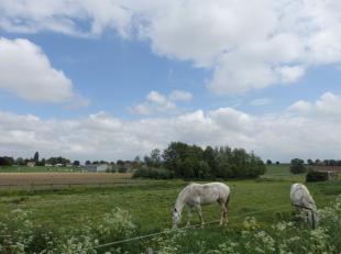 In het hartje van Rollegem kan u kennis maken met5 percelen landbouwgrond,een totaaloppervlakte van maar liefst +/- 20 000 m². Daarbovenop is er