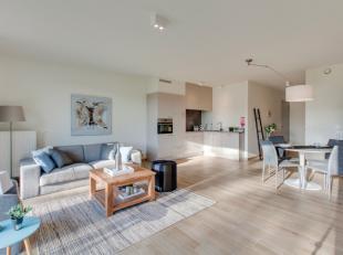 Assisentiewoning C2.02 is gelegen op de tweede verdieping van blok C.Het appartement beschikt over een ruime leefruimte, een geïnstalleerde open