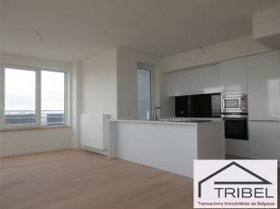 31ème étage - BRUXELLES (Canal/Tour & Taxis), dans l'extraordinaire TOUR UP-SITE, sublime appartement de +/- 105m² + terrasse d