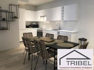 BRUXELLES, quartier Béguinage / Antoine Dansaert, magnifique appartement/duplex entièrement meublé de +/- 135m² + terrasse,