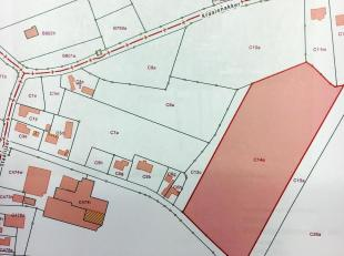 Het toegankelijk perceel landbouwgrond gelegen te 'Raveschootackers', perceelnummer C14a met een oppervlakte van 2ha 22a 36ca is gelegen tussen Staali
