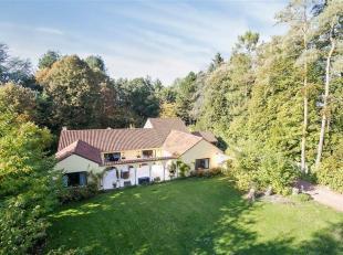 Mooi gerenoveerde villa op een rustig gelegen terrein van +/- 56 are bestaande uit ruime recepties van +/- 85m² - super ingerichte keuken met ont