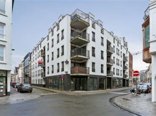 Centrum: APP 2 slpk met terras en optionele staanplaats Het appartement bevindt zich nabij de Meir, Groenplaats en het Eilandje en de campus UA. Het a