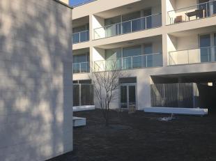 Zorg Residentie De Ark, gelegen aan de vaartkom , energiezuinig nieuwbouw serviceflat met terras, mooie architectuur, voorzien van alle modern comfort