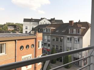 Dit gezellige appartement met terras, in het wandelcentrum van de stad bevindt zich op verdieping 3 en heeft een lift in het gebouw. Indeling is als v