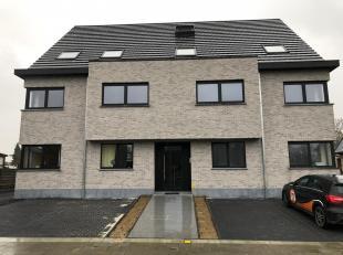 Appartement à louer                     à 9320 Nieuwerkerken