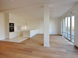 Avenue Louise / Place Stephanie: superb 184m² apartment totally renovated, first occupancy. 3 bedrooms and 3 bathrooms, open kitchen fitted with