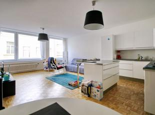 Bailli / Avenue Louise: Mooi appartement van 90m² volledig gerenoveerd in 2017! Lichte leefruimte, volledig uitgeruste keuken, 2 slaapkamers van