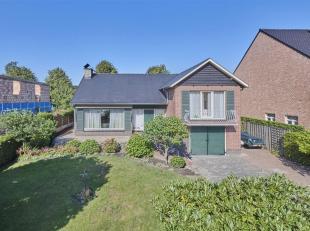 Maison à vendre                     à 3930 Hamont