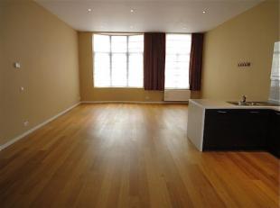 Gerenoveerd appartement in loft-stijl in karaktervol gebouw , 1 GROTE RUIMTE op parketlaminaat, dus geen aparte slaapkamer, open keuken met keramische