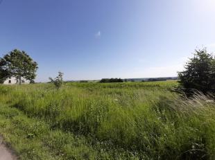 Il ne reste plus que 4 lots sur le lotissement situé dans la commune de Léglise dans le charmant village d'Assenois.Les terrains sont &e