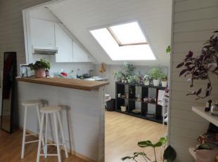 Deze lichtrijke en centraal gelegen bemeubelde studio nabij het park, beschikt over een open geïnstalleerde keuken met zitmogelijkheden, een lich