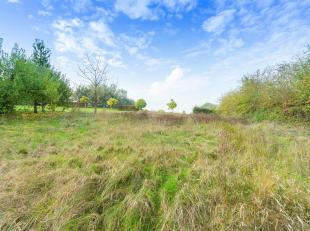 Très beau terrain à bâtir de 11 ares 72 situé dans un agréable quartier à Ramillies. Orientation SUD-OUEST. P