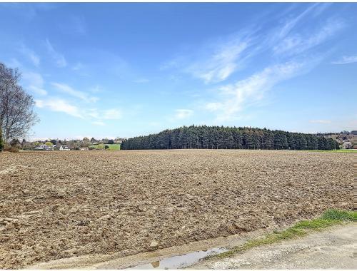 Landbouwgrond te koop in Braine-l'Alleud, € 35.000