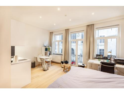 Studio met slaaphoek te huur in Leuven, € 630