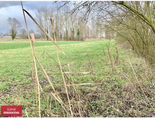 Landbouwgrond te koop in Peer, € 7.500