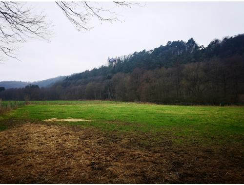 Landbouwgrond te koop in Jalhay, € 28.000