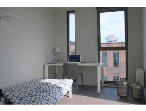 Kot-Kamer te huur in Brugge, € 310