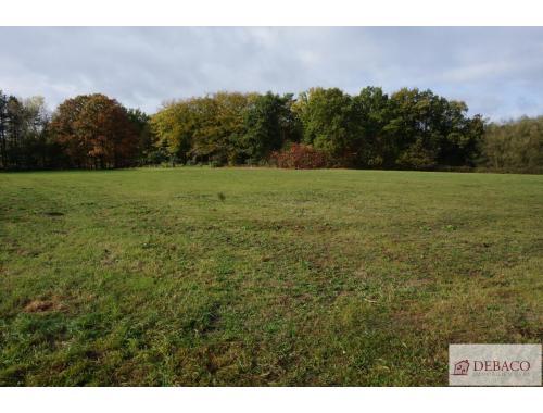 Landbouwgrond te koop in Herenthout, € 103.000