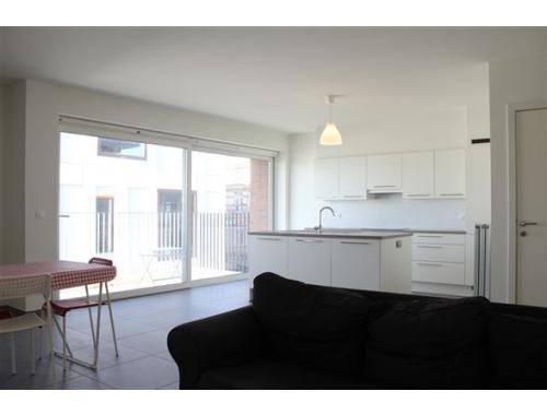 appartement te huur in antwerpen 1020