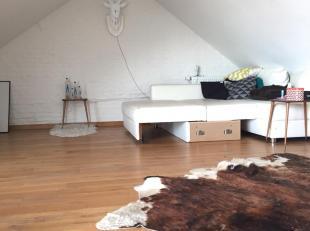Ruime 2-slaapkamer duplex-loft in het hartje van Hasselt. Gelegen op 1min. wandelafstand van The Century (einde winkelstraat Koning Albert). 8 jaar ge