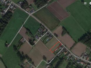 Riante bouwgrond van 1560 m2  in een rustieke en landelijke omgeving. Toch is het centrum van Berlaar maar op 5 min verwijderd. <br /> Geïnteresseerd?