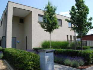 Moderne villa met ruimte voor kantoor/vrij beroep, gelegen in Stokrooie/grenzend aan Bolderberg op een mooi perceel van 12a30ca. <br />  <br /> GELIJK