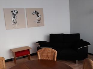 Gelijkvloers appartement met ruime gezamenlijke inkomhal die links toegang geeft tot 2 staanplaatsen in een garage voorzien van automatische poort. Re