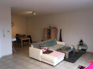 Ruim 2-slaapkamer appartement met veel lichtinval. Het beschikt over 2 badkamers en 2 aparte wc's. <br /> <br /> Slaapkamer 1 is +/- 16 m2 met aangren