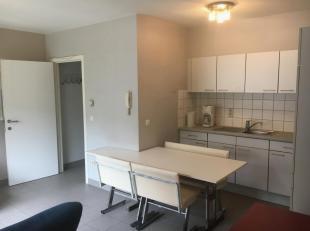 """IN OPTIE centraal gelegen appartement met 1 slpk aan de achterzijde van een kleine residentie """" de kapucijn"""".op 50m van de brusselsestraat/centrum leu"""