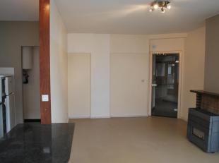 Ruim en modern uitgerust appartement met veel lichtinval te huur. Rustig gelegen, met een goeie verbinding richting het stadscentrum van Oostende ( tr