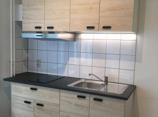 volledig gerenoveerde en gemeubelde studio met badkamer (douche, wc, wastafel), slaaphoek (tweepersoonsbed, kleerkast) en kookhoek (keramische kookpla