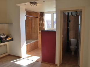 Appartement met 1 slaapkamer te huur in Oostende (8400) | Hebbes & Zimmo