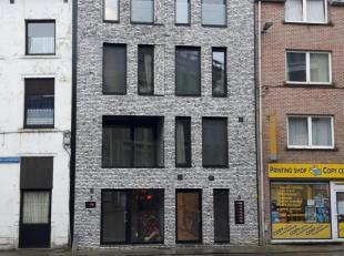Loft met 4slks, veel lichtinval en groot terras (ZW-georiënteerd) te huur in Leuven centrum nabij Gasthuisberg en Kruidentuin.<br /> Betreft 3de en 4d