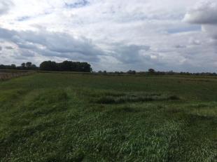 rustig gelegen perceel landbouwgrond met een oppervlakte van 01ha 62are, toegankelijk een landbouwweg